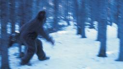 "Dean Cain To Host New Original Series ""10 Million Dollar Bigfoot Bounty"""