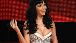 Katy Perry Celebrates the Holidays Topless