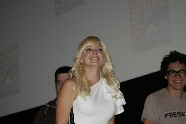 Comic-Con 09: Panel Photo Gallery