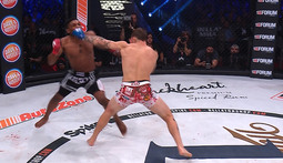 Paul Daley vs. Brennan Ward