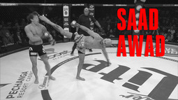 Best Of | Saad Awad | #Bellator201