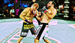 Viacom Purchases Bellator, Spike Will Air Starting 2013