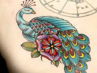 Elimination Tattoo: Peacocks