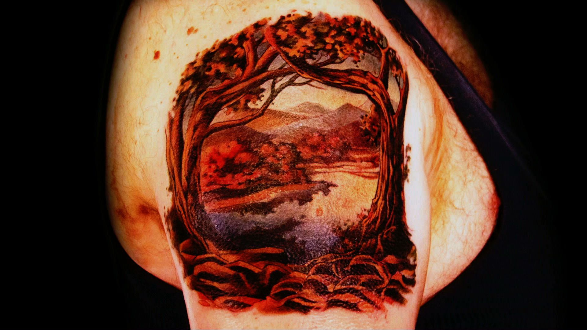 From Plastic To Classic - Tattoo Nightmares | Spike